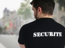 Formation et  mise à disposition de personnels : agents de sécurité, de sécurité incendie (SSIAP 1, 2 et 3), cynophiles ou maîtres-chien,  d'accueil, d'Intervention (rondes, interventions sur alarme) et opérateur de télésurveillance - image 3