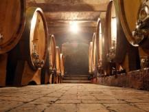 Vin en canette.Gamme de vins français premium en canettes. - image 9