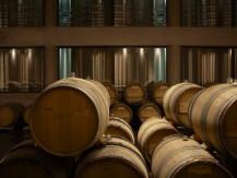 Depuis 1859, la famille Duval-Leroy cultive durablement l'un des plus importants vignobles Premiers et Grands crus à la pointe de la Côte des Blancs, terre des grands chardonnays - image 2