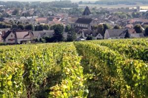 Meilleur champagne Paris. Duval-Leroy depuis 1859. - présentation 3