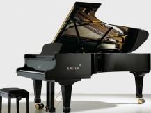 Location ou vente de pianos Sauter, Schimmel, Feurich, Petrof, Yamaha, Bechstein, Pleyel, Gaveau, Erard.. - image 5