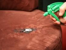 Élimination des chewing-gum sur tous revêtements - image 7