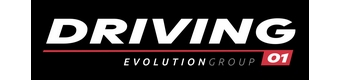DRIVING EVOLUTION GROUP