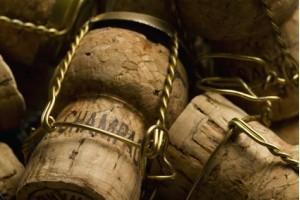 Meilleur champagne Paris. Champagne Prévost Hannoteaux, domaine viticole familial fondé en 1956. - présentation 2