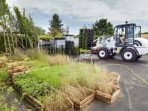 Élagage , toitures et murs végétalisés - image 3
