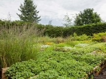 Contrat d'entretien d'espaces verts intérieur et extérieur pour les collectivités,  les entreprises, le privé, les syndics, property management, les entreprises de travaux publics - image 5