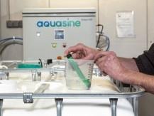 Une solution de désinfection qui respecte la planète, réduit l'empreinte carbone et les déchets - image 4